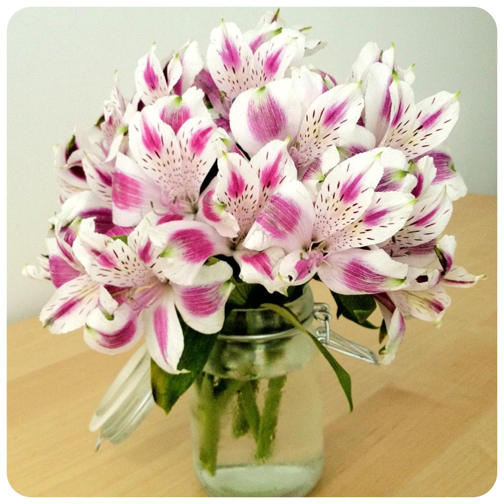 Good Night Beautiful Flowers Comousar